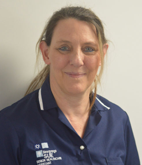 Sue Gaywood - Team Leader - Newgrange